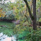 Blue Springs by floridan