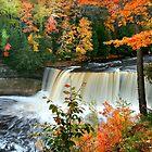 Tahaquamenon  Water falls, Michigan by snehit