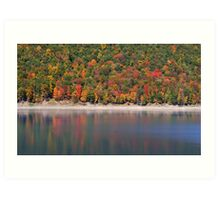 Allegheny national forest Art Print