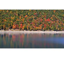 Allegheny national forest Photographic Print