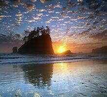 Seastack at sunset, Second Beach, Olympic Peninsula by usafan