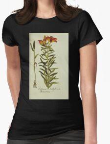 Plantarum Indigenarum et Exoticarum - Lukas Hochenleitter und Kompagnie 1788 - 460 Womens Fitted T-Shirt