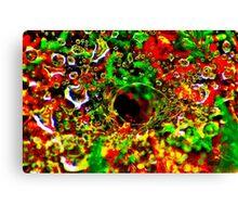 'Coloured Web' Canvas Print