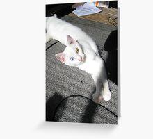 Mia (5) Greeting Card