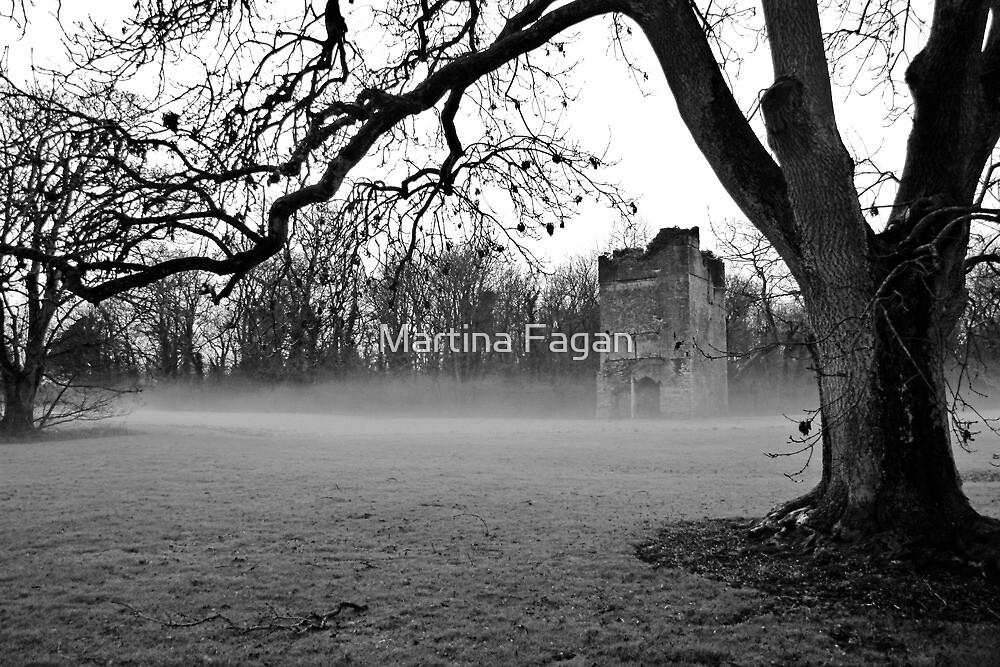 Lanestown,Newbridge Demesne  by Martina Fagan