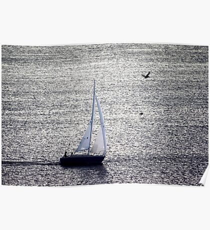 Sailing The Shimmery Sea Poster