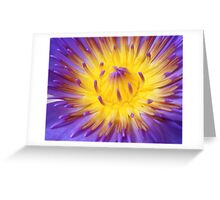 My Heart is Open. Greeting Card