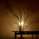 Tree in Fog by Kent Nickell