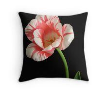 Sorbet Tulip Throw Pillow
