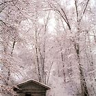 Old Paint Creek School in Winter by Kent Nickell