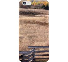 Fenced In  iPhone Case/Skin