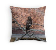 Sitting in a Tree.... Throw Pillow