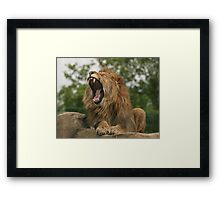 I`m So Bored! Framed Print