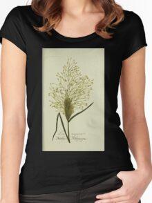 Plantarum Indigenarum et Exoticarum - Lukas Hochenleitter und Kompagnie 1788 - 286 Women's Fitted Scoop T-Shirt