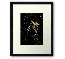 """wind or rain """"SHE WAITS in SILENCE""""... Framed Print"""