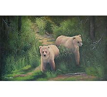 The Cubs of Katmai Photographic Print