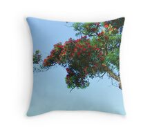 Framing the sky Throw Pillow