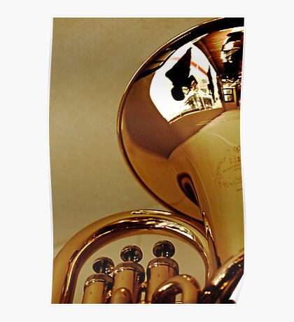 Reflection in brass Poster