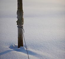 Tied Snow by Johan Hagelin