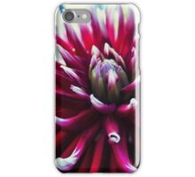 Red Dahlia flower iPhone Case/Skin