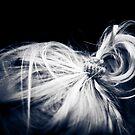 ...lock... by Geoffrey Dunn