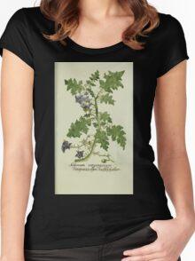 Plantarum Indigenarum et Exoticarum - Lukas Hochenleitter und Kompagnie 1788 - 236 Women's Fitted Scoop T-Shirt