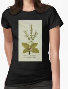 Plantarum Indigenarum et Exoticarum - Lukas Hochenleitter und Kompagnie 1788 - 014 - Salvia Austriaca or Austrian Sage Womens Fitted T-Shirt