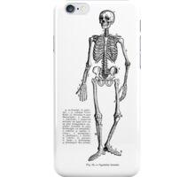Renaissance Human Anatomy Skeleton iPhone Case/Skin