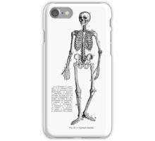 Renaissance Human Anatomy Skeleton iPhone Case/Skin