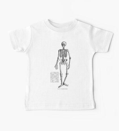 Renaissance Human Anatomy Skeleton Baby Tee