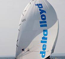 Delta LLoyd Volvo Ocean Race by Katrina Morrison