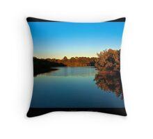 Howard Park - Tarpon Springs, Florida Throw Pillow