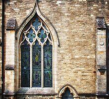 Window and Door by Vicki Field