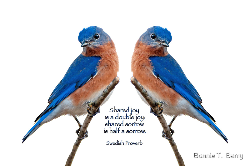 Shared joy is double joy . . . by Bonnie T.  Barry