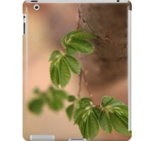 Nature is perfect!  iPad Case/Skin