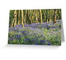 In the Bluebell Wood Greeting Card
