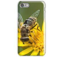 Ragwort feast iPhone Case/Skin