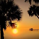 Florida Sunrise by Susanne Van Hulst