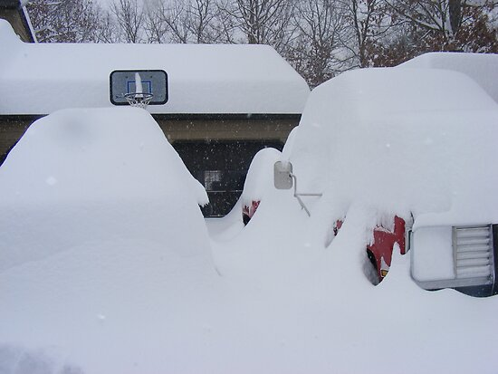 How Much Snow? by Butterfly2008