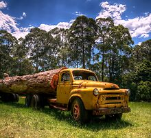 Those logging days are over by Jason Ruth