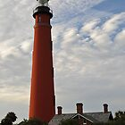 Ponce de Leon Inlet Lighthouse by Per Hansen