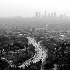Los Angeles - From Hollywood Hill by Julien Delebecque