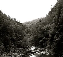 The Path of Least Resistance - Tallulah Gorge, GA by Jay72