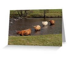 Highland River Crossing Greeting Card