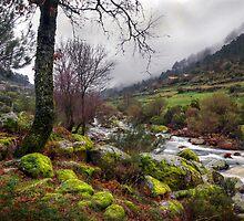Zezere River Valley by ccaetano