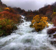 Rapid Water of River Zezere by ccaetano
