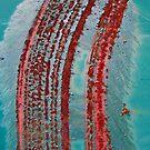 ....fuss and feathers.... by Lynne Prestebak