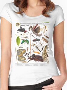 Insects of Gorongosa National Park, Mozambique Women's Fitted Scoop T-Shirt