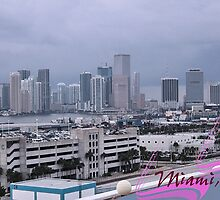 Skyline of Miami by Memaa