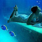 the Sea Princess by sky   princess